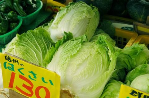 冬の野菜は栄養分が豊富|白菜で美肌効果、動脈硬化も防止
